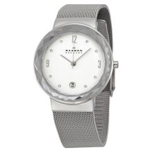 Skagen SKW2004 Womens Silver Dial Analog Quartz  Stainless Steel Watch
