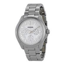 Fossil AM4509 Cecile Womens Silver Dial Analog Quartz Stainless Steel Watch
