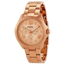 Fossil AM4511 Womens Rose Gold Dial Analog Quartz Watch